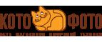 Переход на страницу интернет ресурса «Kotofoto»