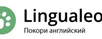 Lingualeo, 1 год Premium-подписки за 999 руб.