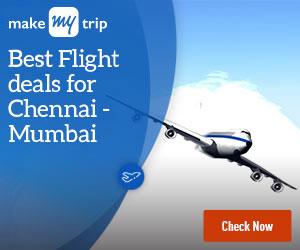 300x250_Basic (Domestic Flights)_2