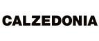 Скидки и акции от ru.calzedonia.com